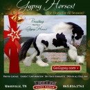 LexLin-Gypsy-Ranch-Affluent-E-mail-Blast-Dec-2009