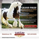 LexLin-Gypsy-Ranch-Sweepstakes-E-mail-Blast-June-2010