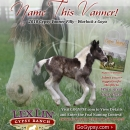 Name-This-Vanner-Flyer-for-e-mail-blast