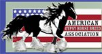 American_Gypsy_Horse_Breed_Association