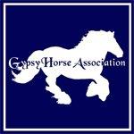 Gypsy_Horse_Association