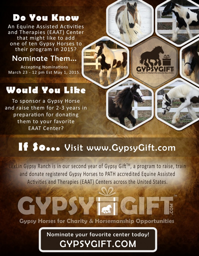 Gypsy Gift 2015 Announcement