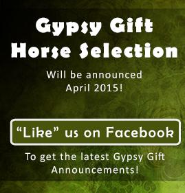 Gypsy Gift - Like Us Box