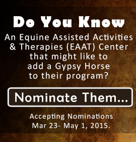 Gypsy Gift - Click to Nominate