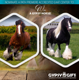 Gypsy Gift - Facebook Nominate a Therapy Center announcement
