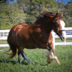 Photo Taken 9/24/2011